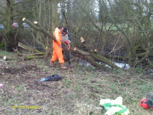 Yet another fallen tree being dealt with at the station site