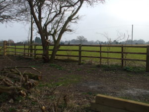 SR Lineside fencing - a mixture of old and new timber