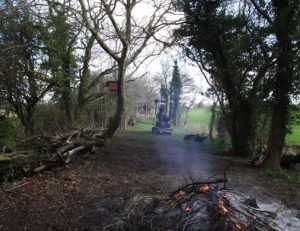 Cleared and raked path, awaiting grass growth - brambles burning in foreground