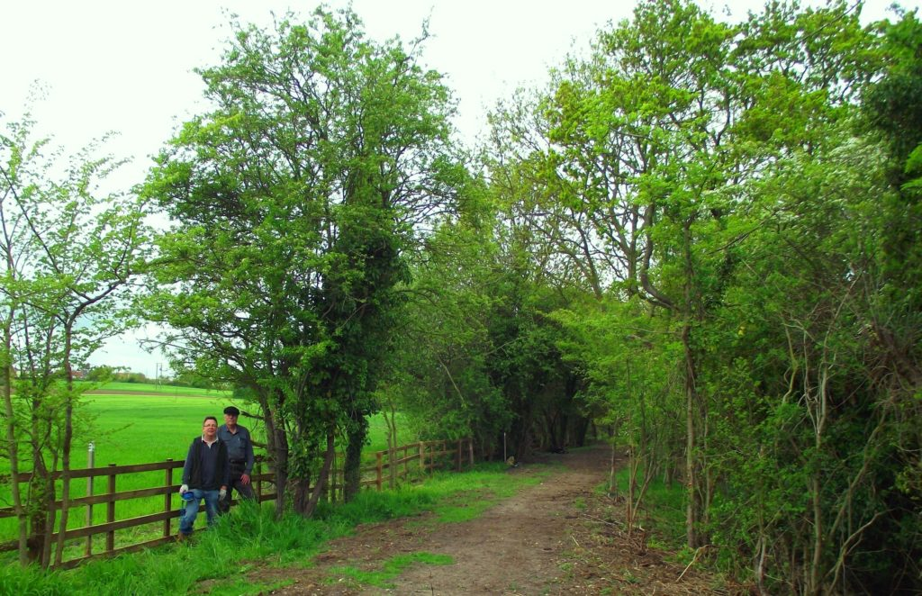 Part of the first length of trackbed bought by the Trust