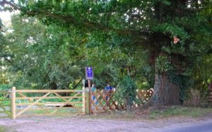 New entrance gate on left: diagonal fencing section completed on right