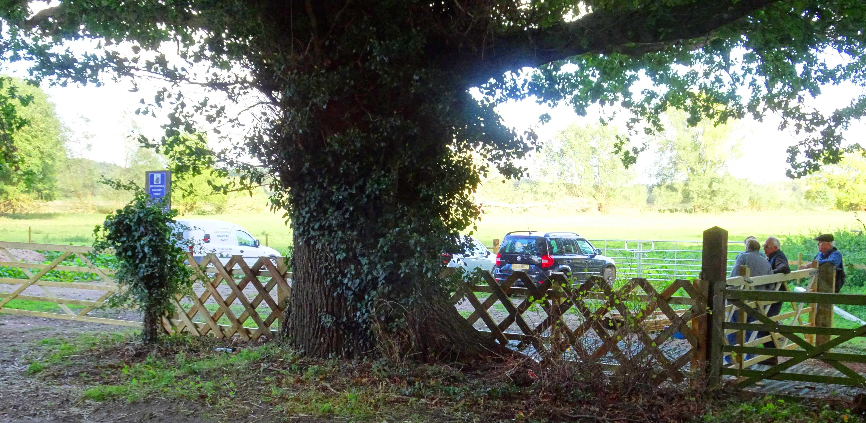 Improving the presentation of Trust land at Wenhaston