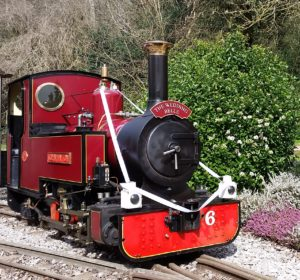 The Perrygrove Railway (photo courtesy of the railway)